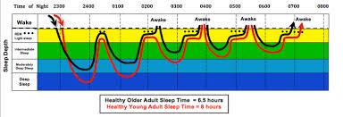 Do we really <b>need</b> eight hours of uninterrupted <b>sleep</b> a night ...