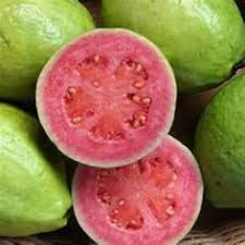 Image result for guava smasher