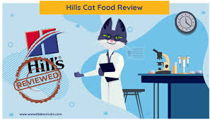 Unbiased <b>Hill's</b> Cat Food Review 2020 - We're All About Cats