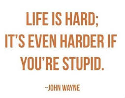 Stupid is as stupid does.....the apple doesn't fall to far from ... via Relatably.com