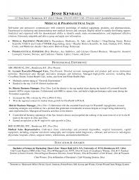 resume career focus on resume career focus on resume template full size