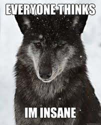Random Animals Memes ☆☆☆ on Pinterest | Insanity Wolf Meme ... via Relatably.com