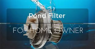 Best Pond Filter Reviews 2017 - Top Rated For The Money