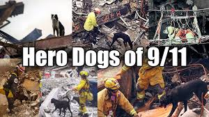 Image result for Dogs of 9-11