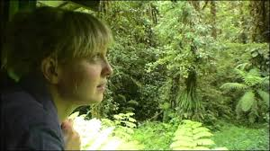 BBC science reporter Rebecca Morelle has joined a team of researchers who are hunting for rare amphibians. They have trekked deep into the rainforest - and ... - _45008455_08ba616c-eae9-4e6d-8ab4-c1d48b5b5afa
