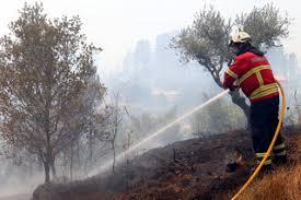 270 bombeiros vão permanecer no terreno em Penedono durante o dia de hoje