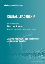 digital leadership an interview darrin shamo zappos