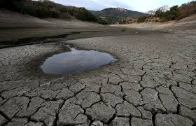 Image result for Drought photos