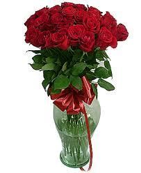 תוצאת תמונה עבור פרחים אדום