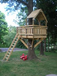 ideas about Tree Forts on Pinterest   Tree Houses    tree house back