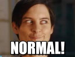 Normal! - Spiderman Peter Parker meme on Memegen via Relatably.com