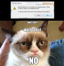 "grumpycat say a definite ""NO"" to IE photo | Animal Memes ... via Relatably.com"