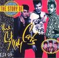 Story of the Stray Cats