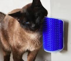 """The Ooh La La"" <b>Wall Mounted</b> Cat Scratcher <b>Brush</b> with Catnip ..."