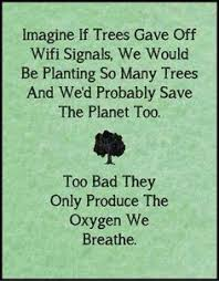 Arbor Day on Pinterest | Arbors, Earth Day and Tree Templates