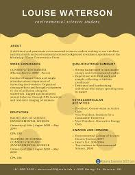 perfect entry level resume examples resume examples 2017 online resume examples for freshers