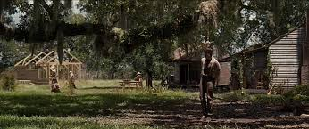 film form and content part one mise en scene years a slave ls of sol hanging in 21 years a slave this can be viewed at com watch v 92amgy8p2po