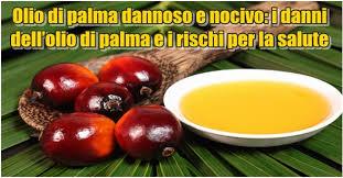 Risultati immagini per olio di palma