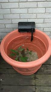 diy patio pond: patio pond made from a flower pot without drain holes and fish tank filter