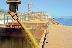 Resultado de imagem para commodities brasil