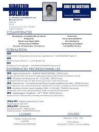 sulmon s eacute bastien cv chef de secteur actualis eacute pdf par sulmon sebastien cv chef de secteur actualise 11 15 pdf