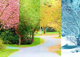 <b>Japan's</b> Weather & Four Seasons: All about the climate of <b>Japan</b> ...