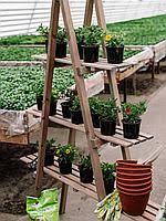 Дача-сад-огород оптом в Пружанах. Сравнить цены, купить ...
