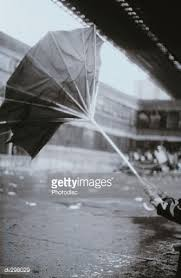 Image result for pictures of broken umbrellas in a rainy day