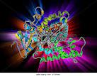 haemoprotein