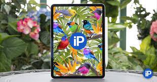 <b>Apple</b> изобрела <b>планшет</b> заново. Обзор <b>11</b>-дюймового <b>iPad Pro</b> ...