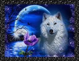"""Résultat de recherche d'images pour """"gifs bon we loups"""""""