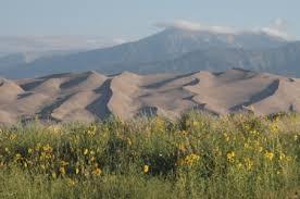 Image result for sand dunes oregon