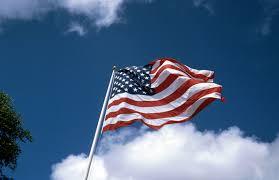 Image result for U.s.a flag