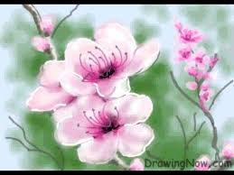 Image result for peach blossoms