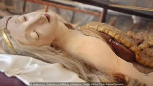 bbc culture why these anatomical models are not disgusting dissecting beauty credit credit josephinum collections and history of medicine meduni