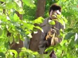 Lah Ruk Sut Kob Fah Archives - ThaiLakornVideos.com