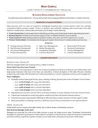 executive s resume ceo resum s executive resume template s manager sample resume