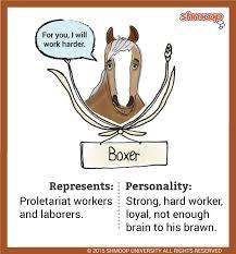 boxer  a horse  in animal farmbrawn not brains