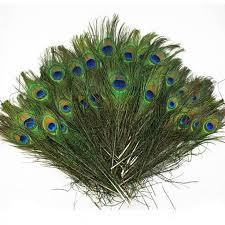 Details about <b>100pcs lots</b> Real <b>Natural</b> Peacock Tail Eyes Feathers ...