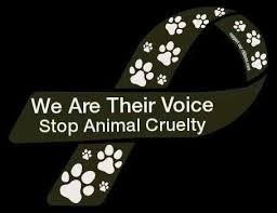 Against Animal Abuse Quotes. QuotesGram