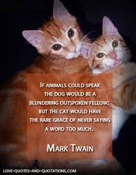 Cat Love Quotes in Appreciation of Felines