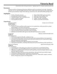 resume for server 15001941 resume sample server template resume examples server banquet captain resume