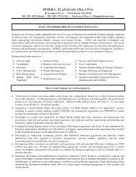it auditor resume   sales   auditor   lewesmrsample resume  it auditor resume with internal template