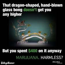 Dragon Bong Marijuana Harmless? Weed Memes - Weed Memes via Relatably.com