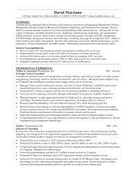 financial skills resume financial representative resume career advisor resume