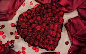 List of Free <b>Lovely</b> Rose Hd <b>Wallpapers</b> Download - Itl.cat