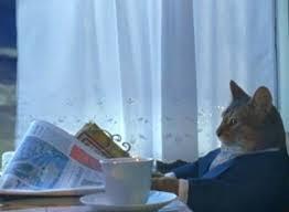 I Should Buy A Boat Cat Meme Generator - Imgflip via Relatably.com