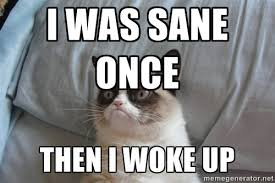 i was sane once then i woke up - Grumpy Cat | Meme Generator via Relatably.com