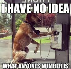Memes Vault Dog Phone Memes via Relatably.com