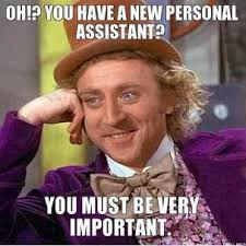 oh-you-have-a-new-personal-assistant-you-must-be-very-important-thumb.jpg via Relatably.com
